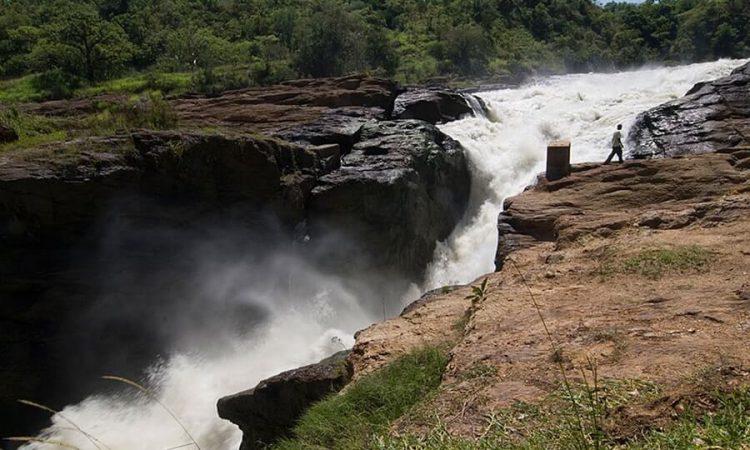 3 Days Murchison Falls Family Safari