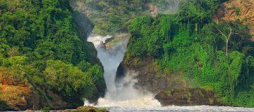 4 Days Murchison falls safari