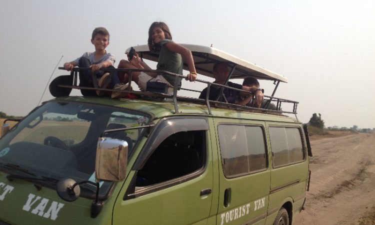 family safari van