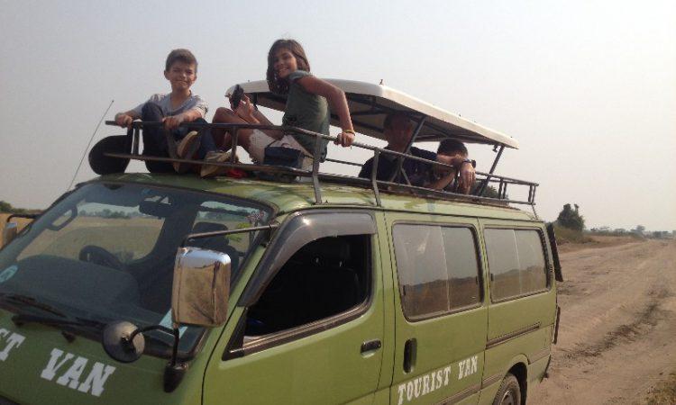 family safari van