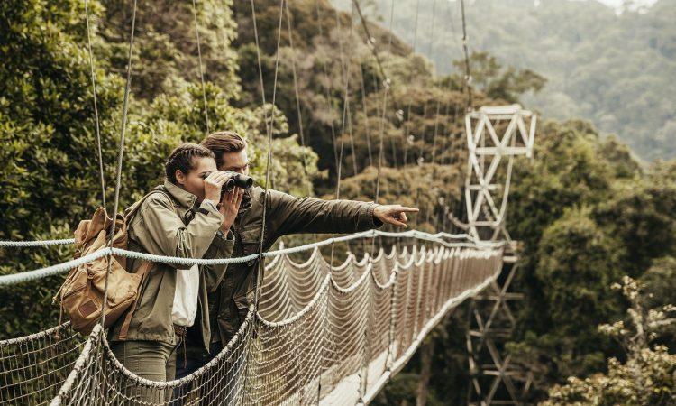Nyungwe forest Rwandav